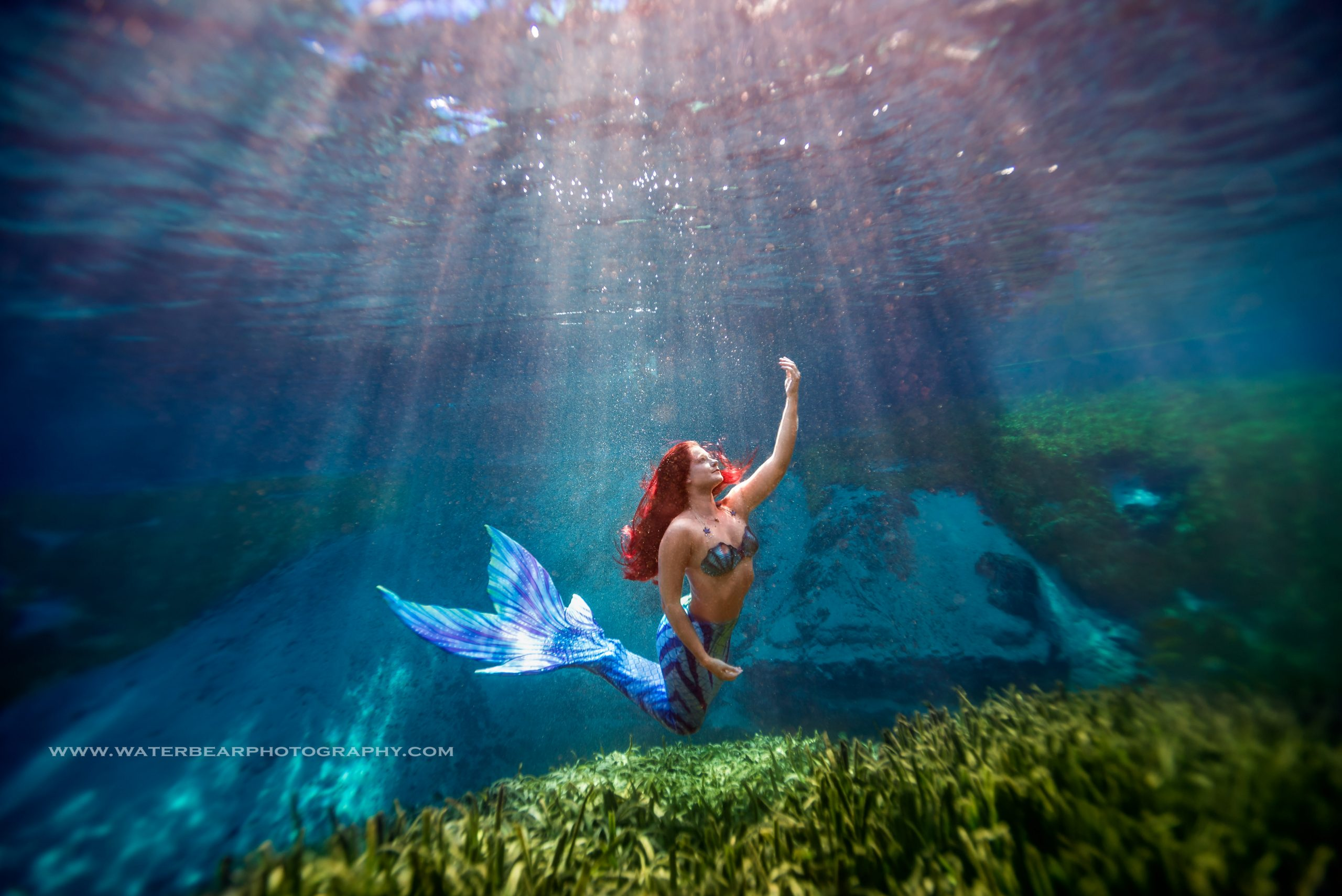 swimming with mermaids at alexander springs florida