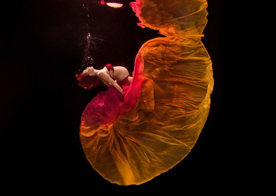Underwater maternity photo - Water bear photography underwater photographer in gainesville florida